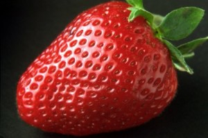 Hydroponic Nutrients For Strawberries